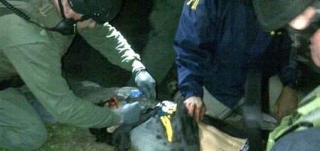 dzokhar tsarnaev captured