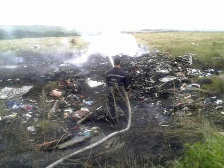 MH17 crash 1
