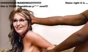 Palin fucking America